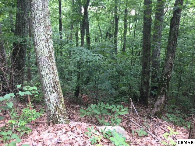 Hideaway Way - Lot 19, Sevierville, TN 37876 (#216645) :: Billy Houston Group