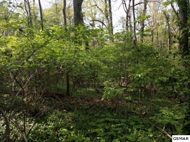 Lot 27 Crestwood Drive Lot 27, Knoxville, TN 37914 (#216688) :: Billy Houston Group
