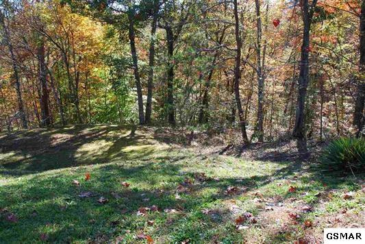 Lot 2C W Gold Dust Drive, Pigeon Forge, TN 37863 (#216708) :: Billy Houston Group