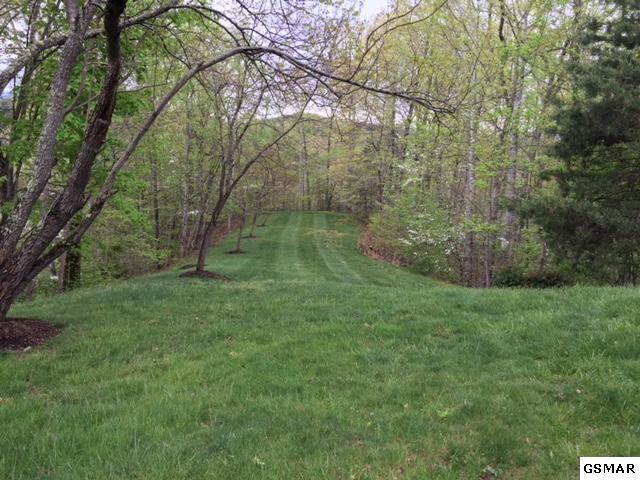 Harris Mountain Way, Sevierville, TN 37876 (#216947) :: Billy Houston Group