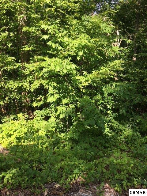 Lot Lot 20 Red Bud Ln, Sevierville, TN 37876 (#217044) :: Billy Houston Group