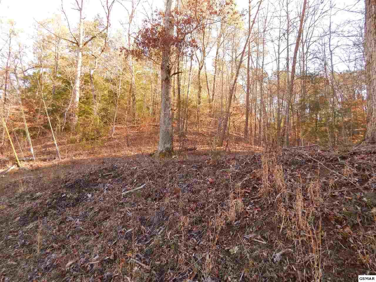 https://bt-photos.global.ssl.fastly.net/gsmar/orig_boomver_1_217208-2.jpg