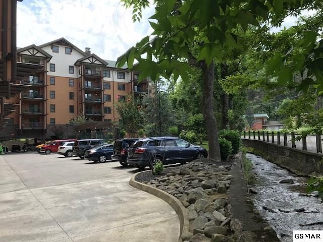 215 Woliss Ln. #407, Gatlinburg, TN 37738 (#217216) :: Colonial Real Estate