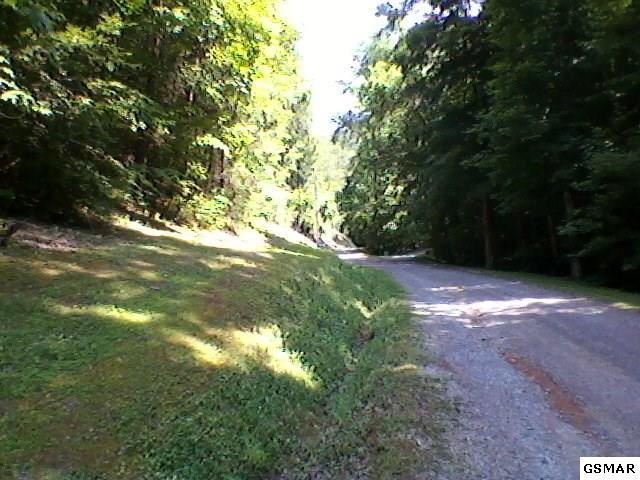 3489 Lost Branch Rd, Sevierville, TN 37862 (#217404) :: Colonial Real Estate