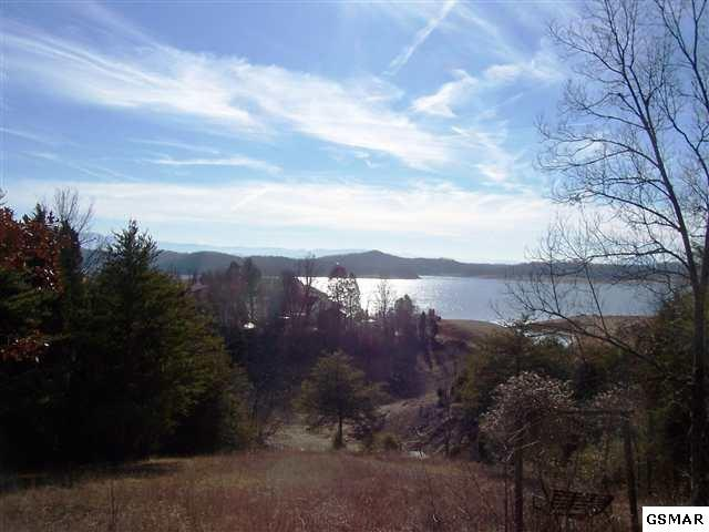 Lots 17 & 18 Lakefront Drive, Dandridge, TN 37725 (#217422) :: Billy Houston Group