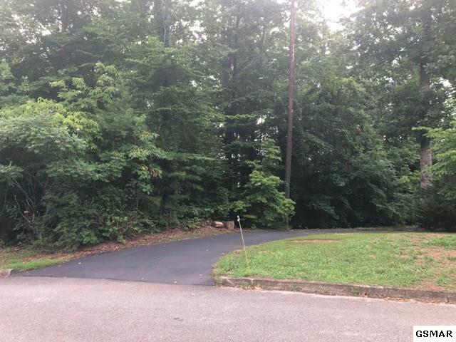 Lot 19 Deer Meadows Road, Sevierville, TN 37862 (#217489) :: The Terrell Team