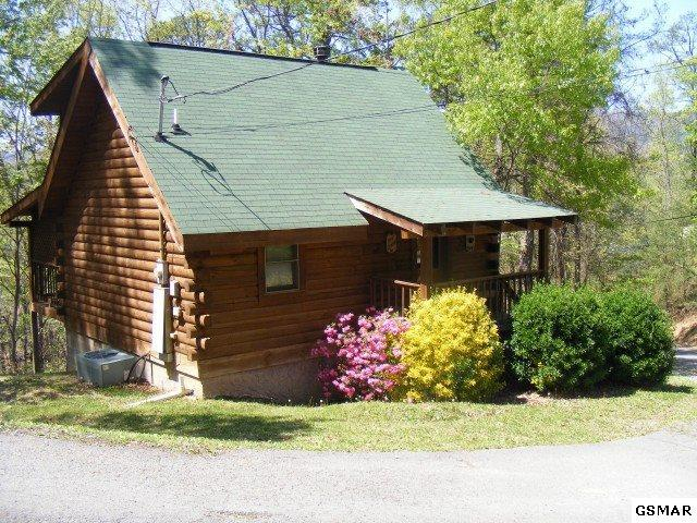 "2920 Valley Springs Way ""Makin Memories, Sevierville, TN 37862 (#217501) :: SMOKY's Real Estate LLC"