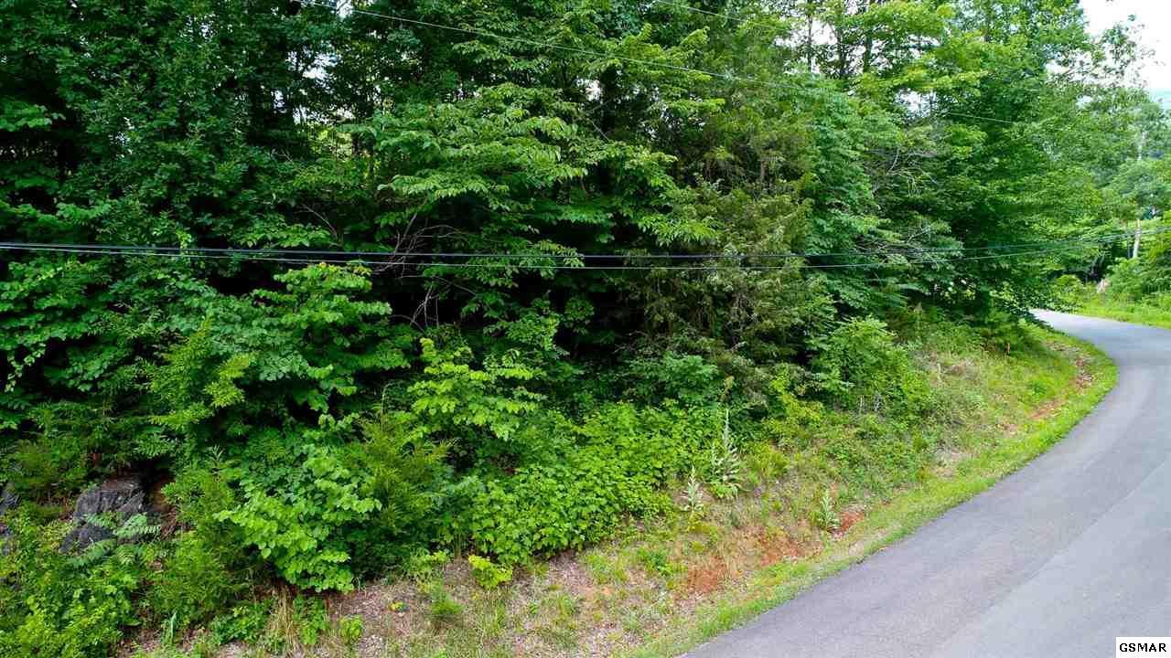 LOT 3 Tomahawk Drive - Photo 1