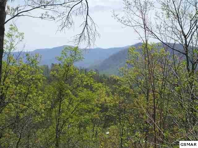 LOT 158E Harmony Hill Lane, Sevierville, TN 37862 (#217591) :: Colonial Real Estate