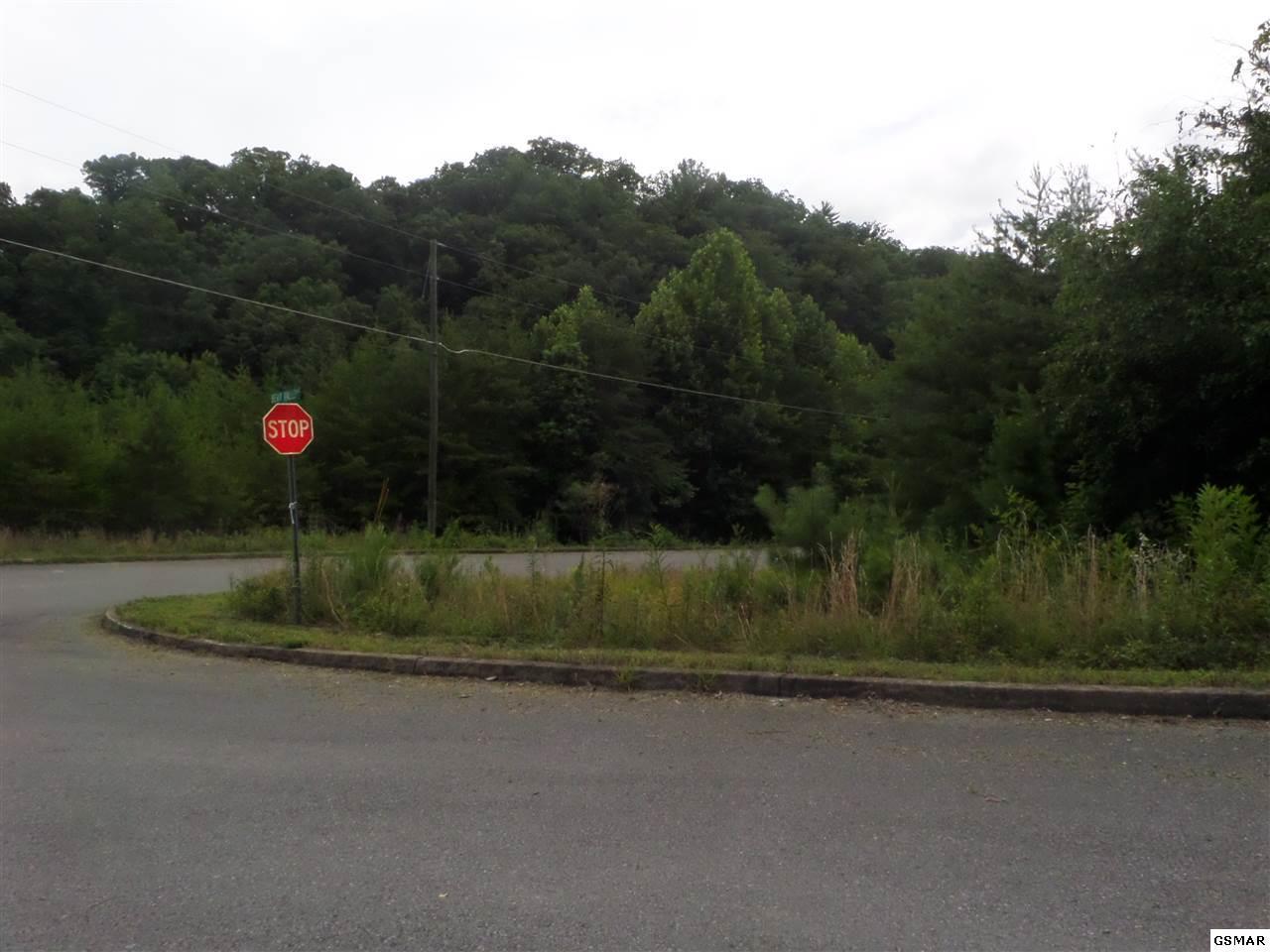 Bluff Ridge Rd - Photo 1