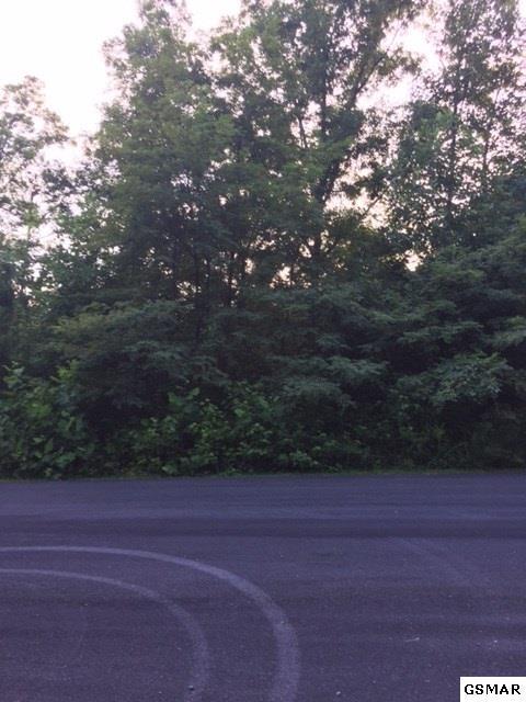 3899 Bear Track Way, Del Rio, TN 37727 (#217658) :: Colonial Real Estate