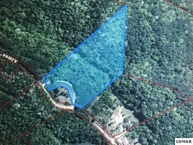 Lot 10 Azalea Trail, Sevierville, TN 37862 (#217689) :: Billy Houston Group