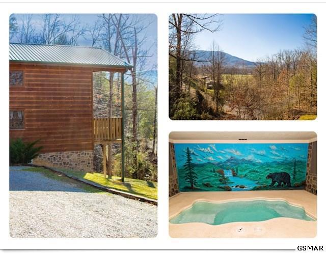 3506 Country Dreams Way Skinny Dipping, Sevierville, TN 37862 (#217863) :: Colonial Real Estate