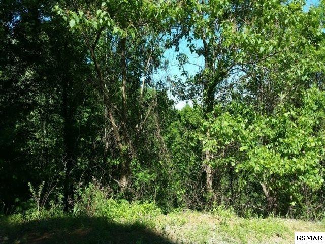Lot Lot 10 Dove View Rd, Sevierville, TN 37862 (#217941) :: Billy Houston Group