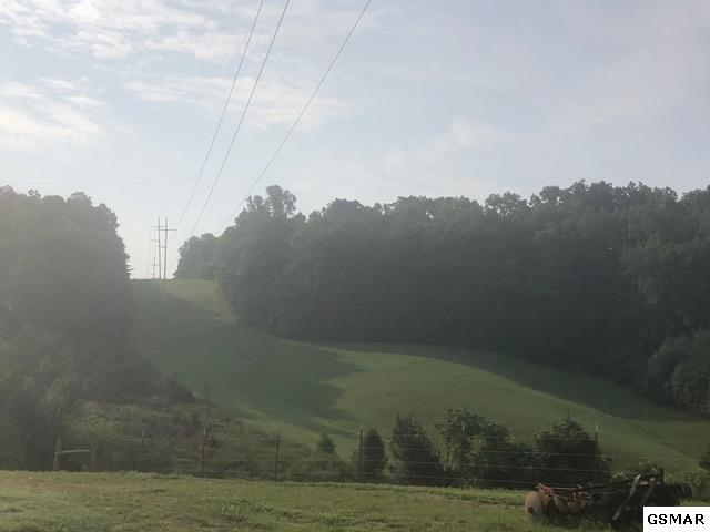 Lot 11 Zirkle Road, Dandridge, TN 37725 (#217999) :: Billy Houston Group