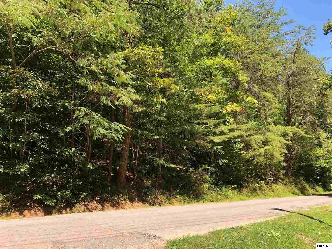Lots 56 & 57 Cove Hollow Road - Photo 1