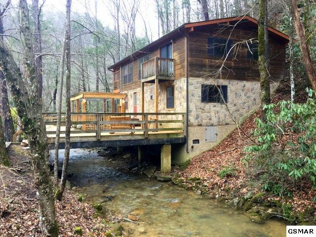 3161 N Clear Fork Rd, Sevierville, TN 37862 (#218101) :: Billy Houston Group