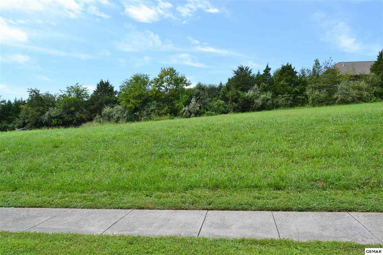 Lot 18 Rippling Waters Circle - Photo 1