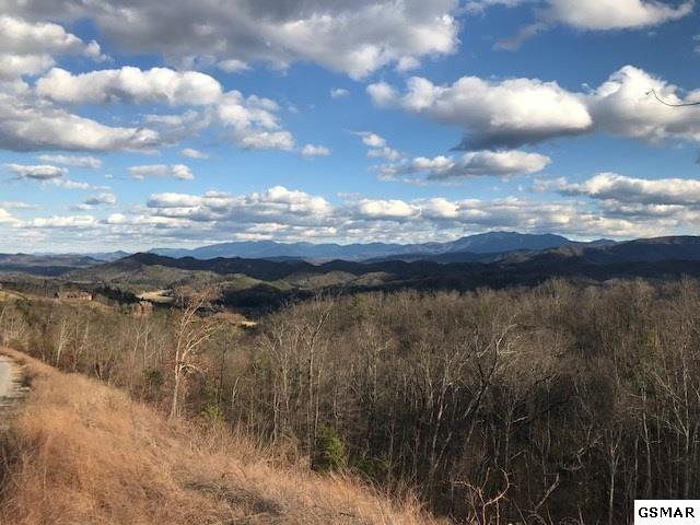 Lot Lot 104 Laurel Cove Trail, Sevierville, TN 37862 (#218240) :: Billy Houston Group