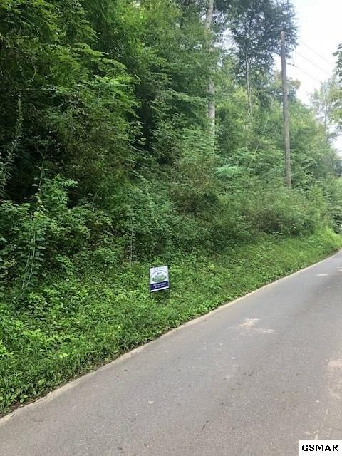Lot 3 Manis Hollow Rd, Sevierville, TN 37862 (#218267) :: Billy Houston Group