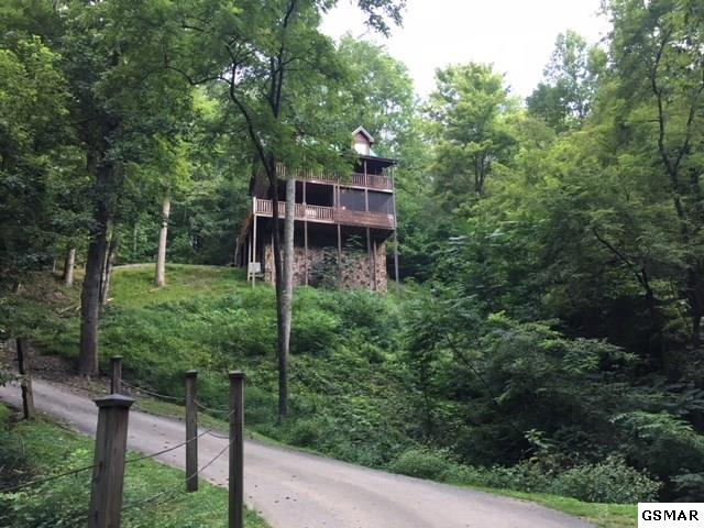 2248 Red Bud Rd, Sevierville, TN 37876 (#218338) :: Billy Houston Group