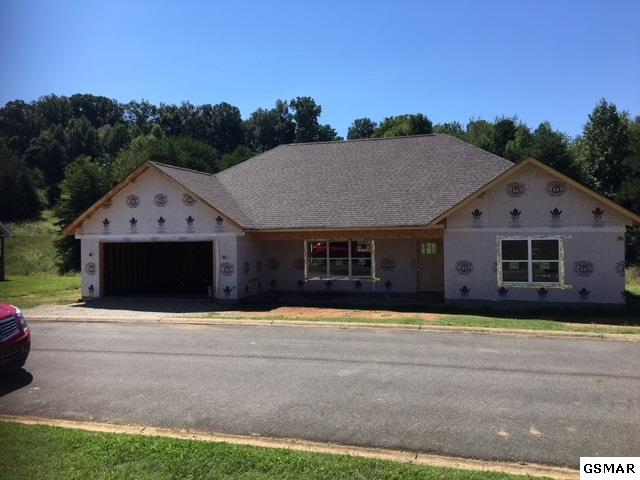 2011 Glacier Ave, Sevierville, TN 37862 (#218349) :: Colonial Real Estate
