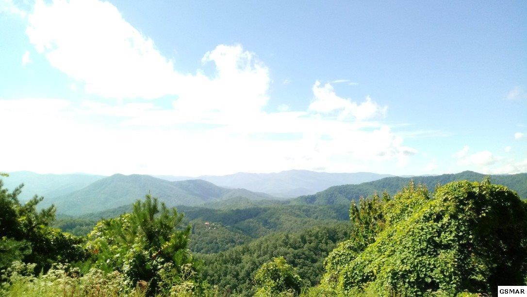 149 Harmony Hills Ln - Photo 1