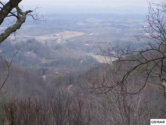 000 Richardson Cove Road, Sevierville, TN 37876 (#218504) :: The Terrell Team
