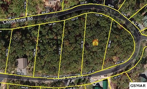 Lot 40 Cloud View Dr, Sevierville, TN 37862 (#218514) :: Billy Houston Group