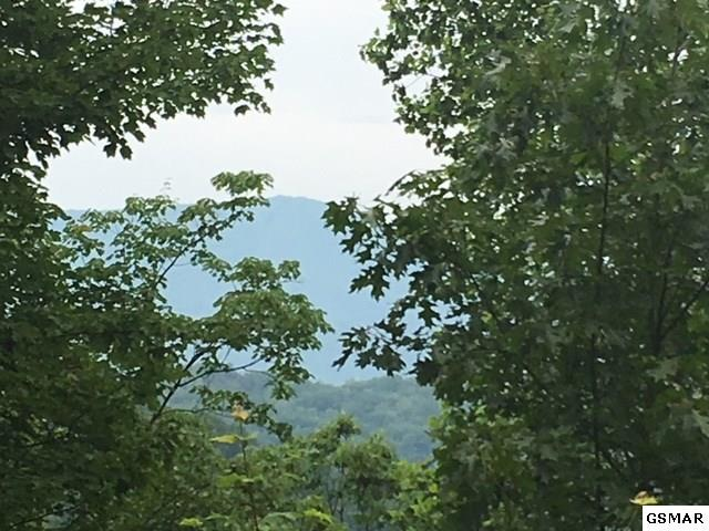 Lot 1 Overholt Trail Shagbark, Sevierville, TN 37862 (#218515) :: Billy Houston Group