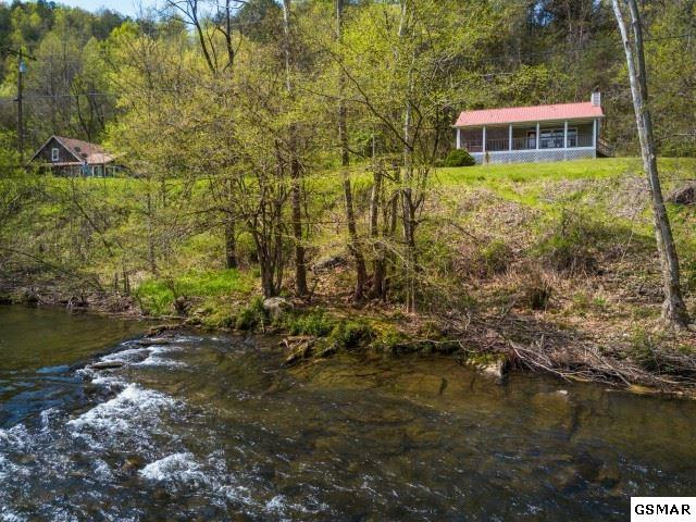 3620 Pittman Center Road, Sevierville, TN 37876 (#218550) :: Four Seasons Realty, Inc