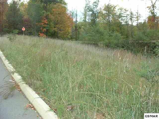 Lot 55 Mistletoe Loop - Photo 1