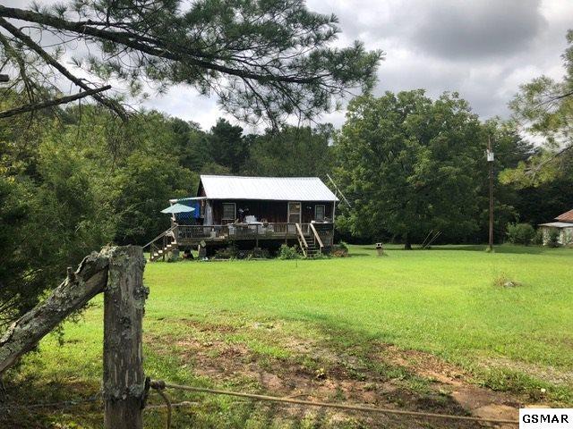 3175 Mutton Hollow Road, Kodak, TN 37764 (#219247) :: Colonial Real Estate