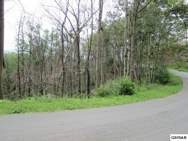 Lot 58 Deer Path Ln., Gatlinburg, TN 37738 (#219268) :: Four Seasons Realty, Inc