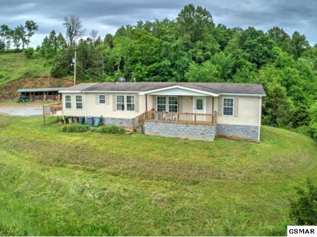 3039 Roaring Fork Rd, Greeneville, TN 37745 (#219451) :: Colonial Real Estate