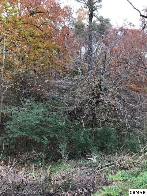 lot 7&9 Dark Ridge Rd, Cosby, TN 37722 (#219480) :: SMOKY's Real Estate LLC