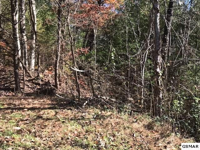 lot 24 Mountian Rest Way, Sevierville, TN 37876 (#219560) :: Billy Houston Group