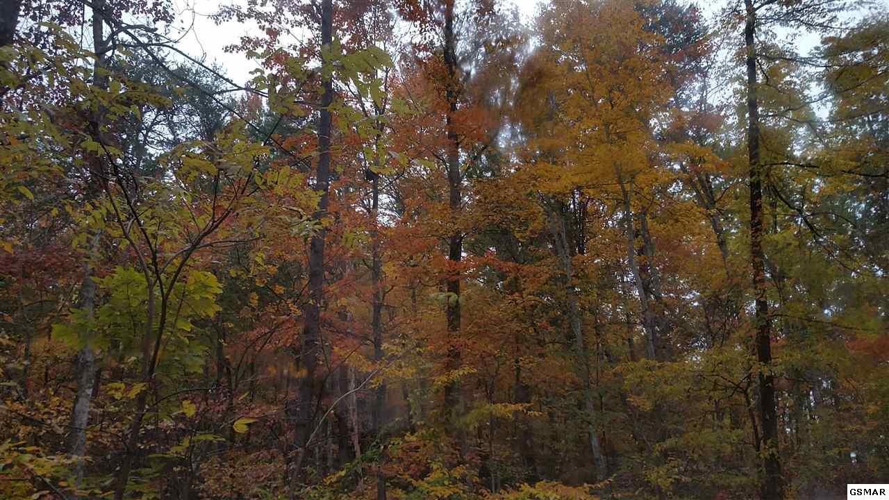 lot 12 Misty Hollow Way - Photo 1