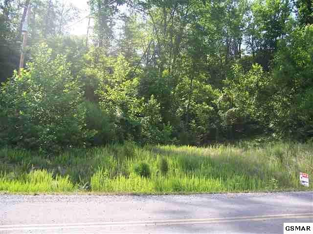 Lot 24 Longspur Trail, Sevierville, TN 37862 (#219653) :: Colonial Real Estate