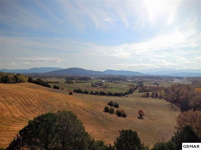 Parcel 045.00 E Walnut Grove Rd, Sevierville, TN 37876 (#219843) :: Four Seasons Realty, Inc