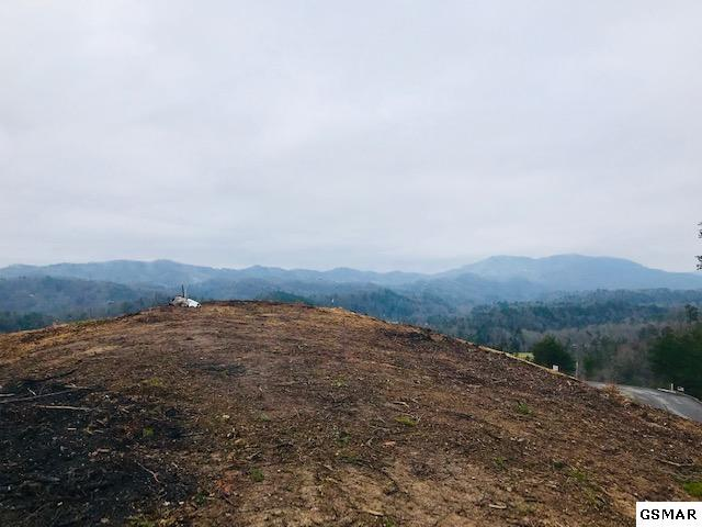Lot 63 Crown Point Ln, Sevierville, TN 37862 (#220201) :: Billy Houston Group