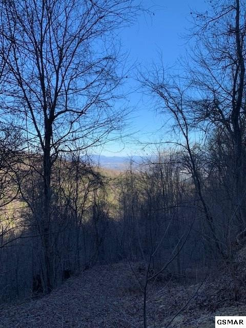 Lot 9 Bluff Mountain Rd, Sevierville, TN  (#220284) :: Billy Houston Group