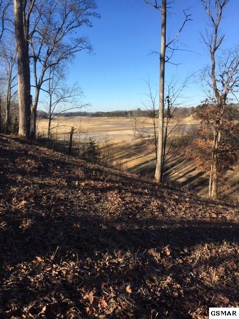 Lot 51 Rocky Point Way Timberlake Bay , Sevierville, TN 37876 (#220328) :: The Terrell Team