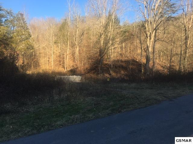 4 parcels Sharp Rd, Sevierville, TN 37876 (#220378) :: Billy Houston Group