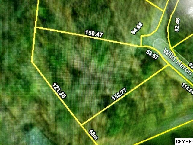 137 Wild Heron Way, Sevierville, TN 37862 (#220541) :: Billy Houston Group