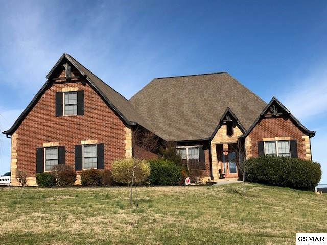 1256 Rippling Waters Circle, Sevierville, TN 37876 (#220712) :: The Terrell Team