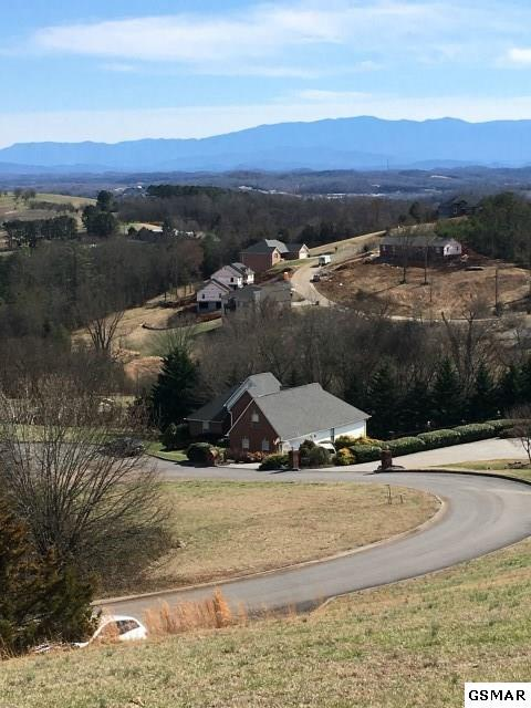 Lot Lot 5 Summerhill Dr, Kodak, TN  (#220751) :: Billy Houston Group