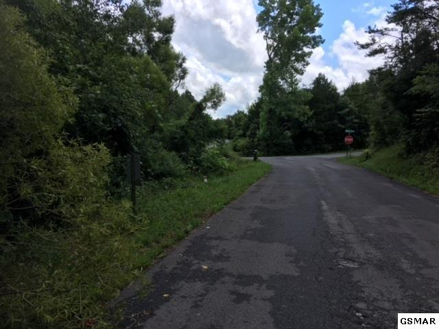 Lot 12 Buck Horn Rd, Sevierville, TN 37876 (#220773) :: Four Seasons Realty, Inc