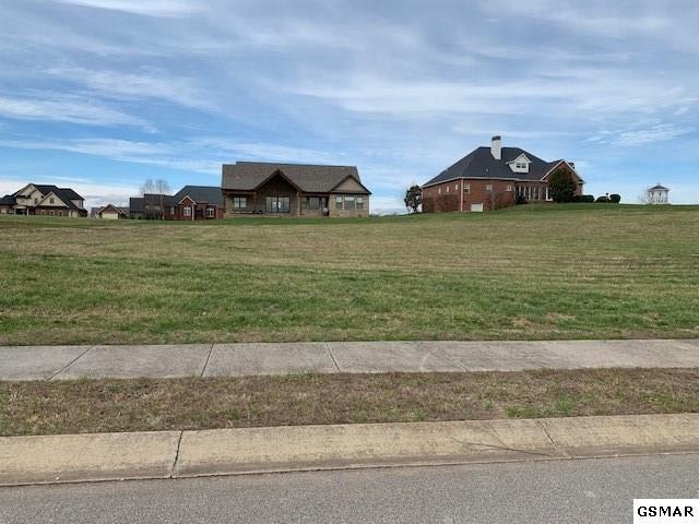 Lot 88 Cascading Falls Ln, Sevierville, TN 37876 (#220779) :: Colonial Real Estate