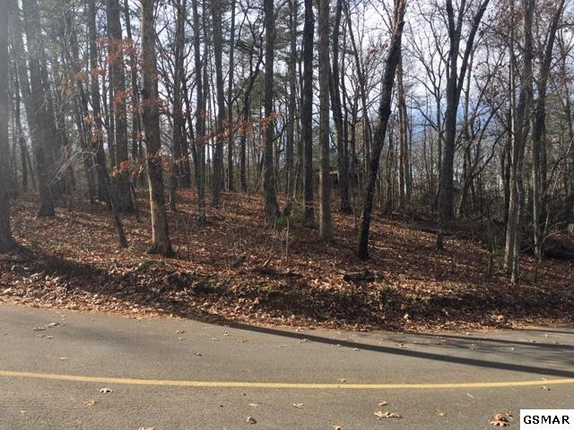 Lot 1101 E View Dr, Sevierville, TN 37876 (#220797) :: Billy Houston Group